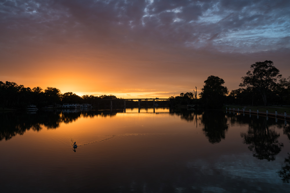 Murray River Sunrise