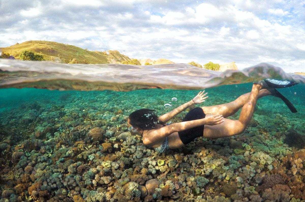 Besondere Unterwasserwelt vor Pink Beach