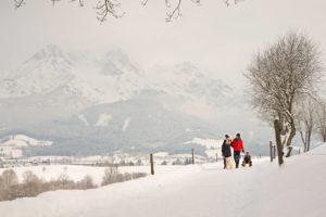 Schlittenfahren und Winterwandern